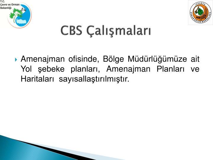 CBS Çalışmaları