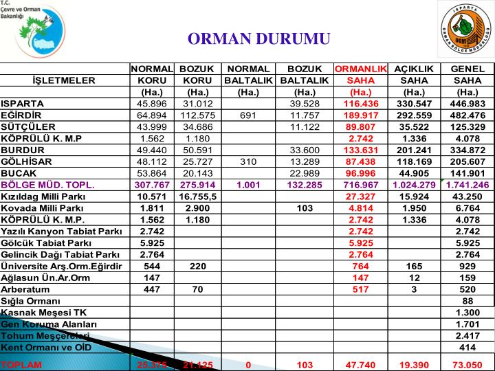 ORMAN DURUMU