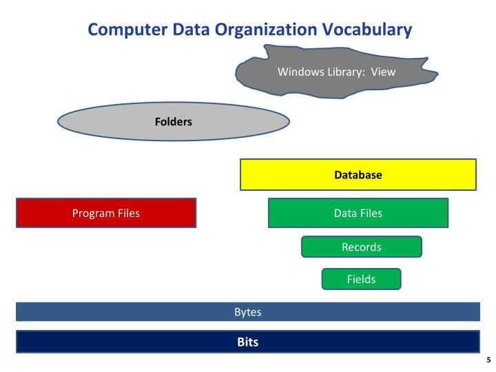 Computer Data Organization Vocabulary