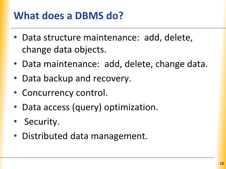 What does a DBMS do?
