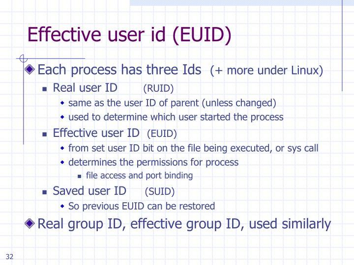 Effective user id (EUID)