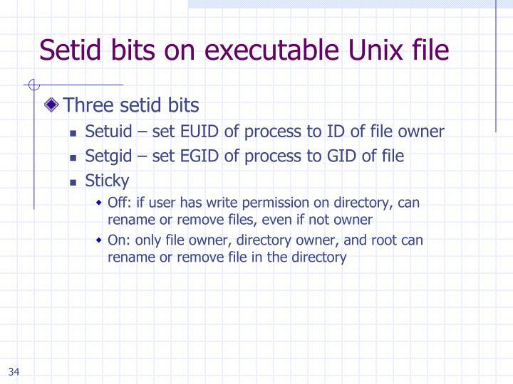 Setid bits on executable Unix file