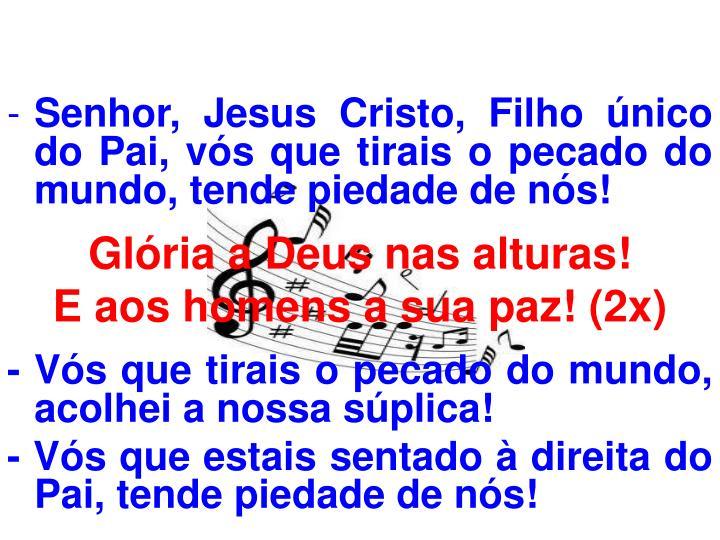 Senhor, Jesus Cristo, Filho único do Pai, vós que tirais o pecado do mundo, tende piedade de nós!