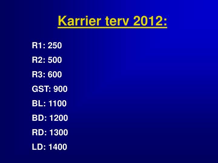 Karrier terv 2012: