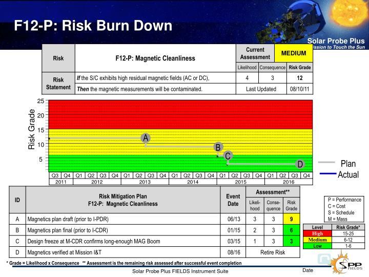 F12-P: Risk