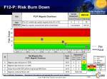 f12 p risk burn down