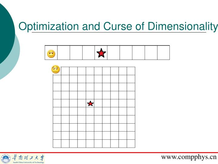 Optimization and Curse of Dimensionality