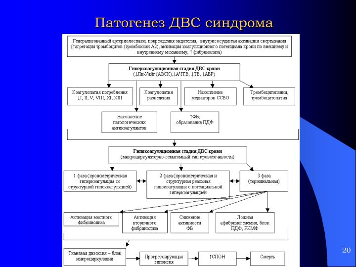 Патогенез ДВС синдрома