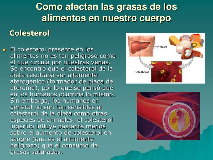 Como afectan las grasas de los alimentos en nuestro cuerpo