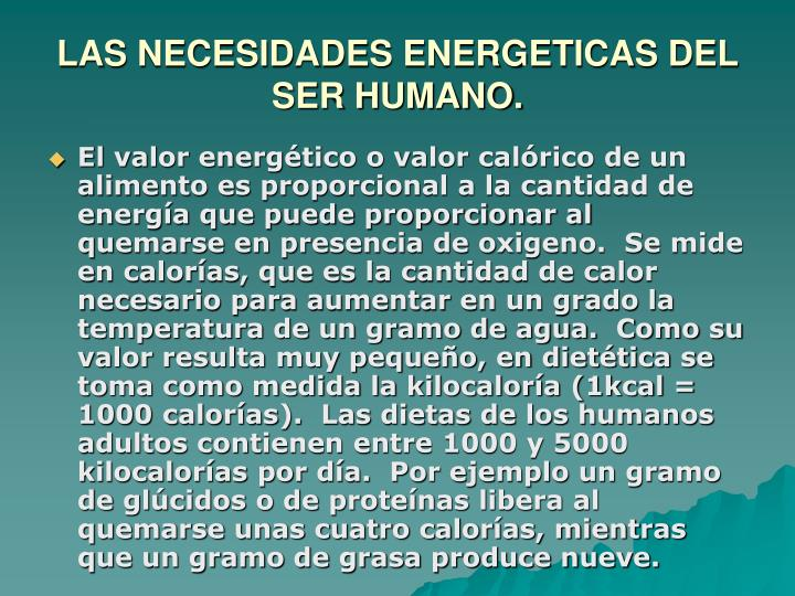 LAS NECESIDADES ENERGETICAS DEL SER HUMANO.