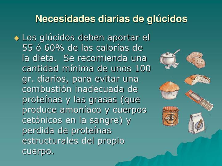 Necesidades diarias de glúcidos