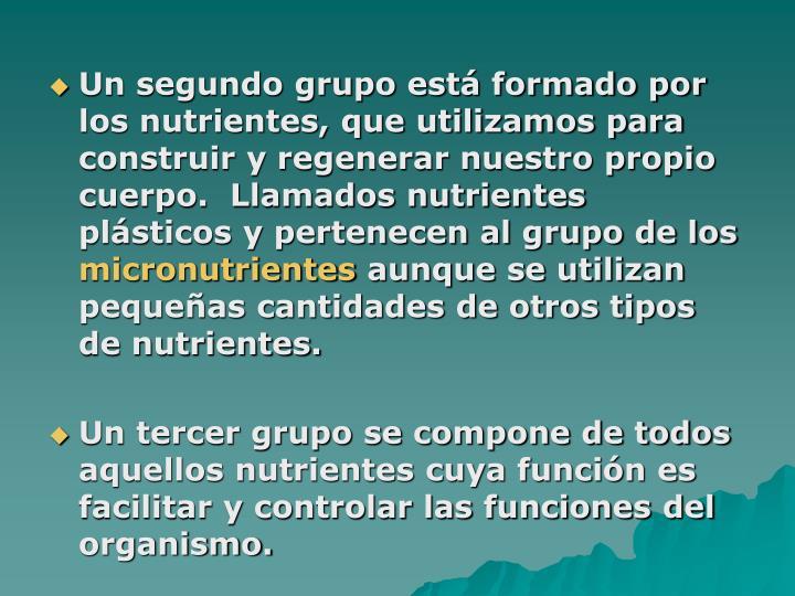 Un segundo grupo está formado por los nutrientes, que utilizamos para construir y regenerar nuestro propio cuerpo.  Llamados nutrientes plásticos y pertenecen al grupo de los