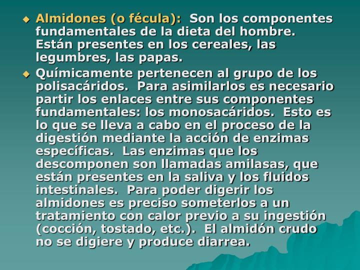 Almidones (o fécula):