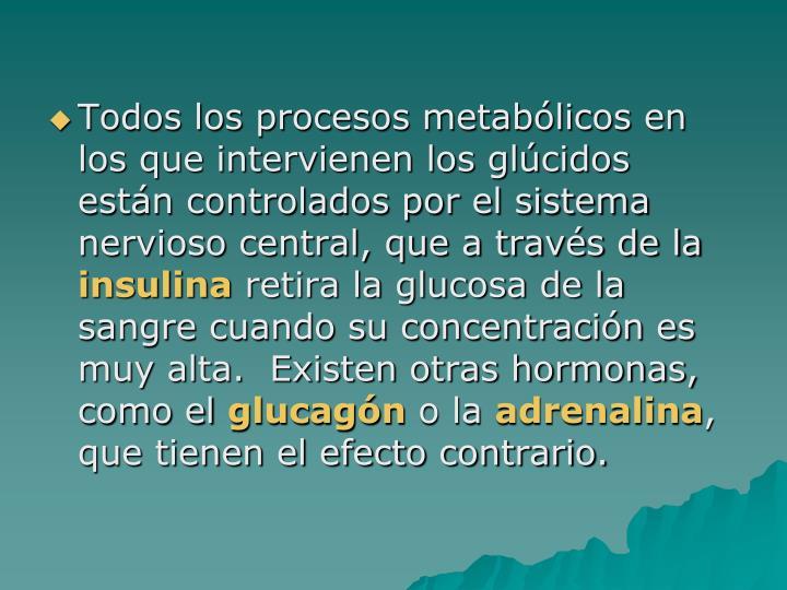 Todos los procesos metabólicos en los que intervienen los glúcidos están controlados por el sistema nervioso central, que a través de la