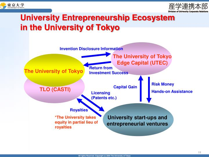 University Entrepreneurship Ecosystem