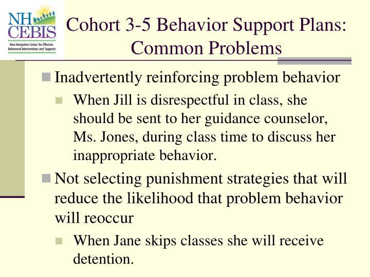 Cohort 3-5 Behavior Support Plans: Common Problems