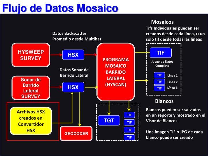 Flujo de Datos Mosaico