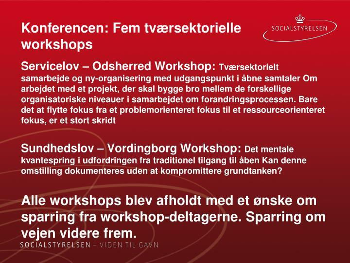 Konferencen: Fem tværsektorielle workshops