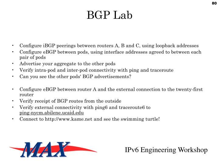 BGP Lab