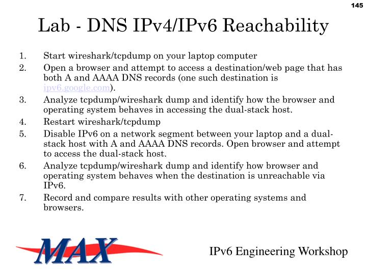 Lab - DNS IPv4/IPv6 Reachability