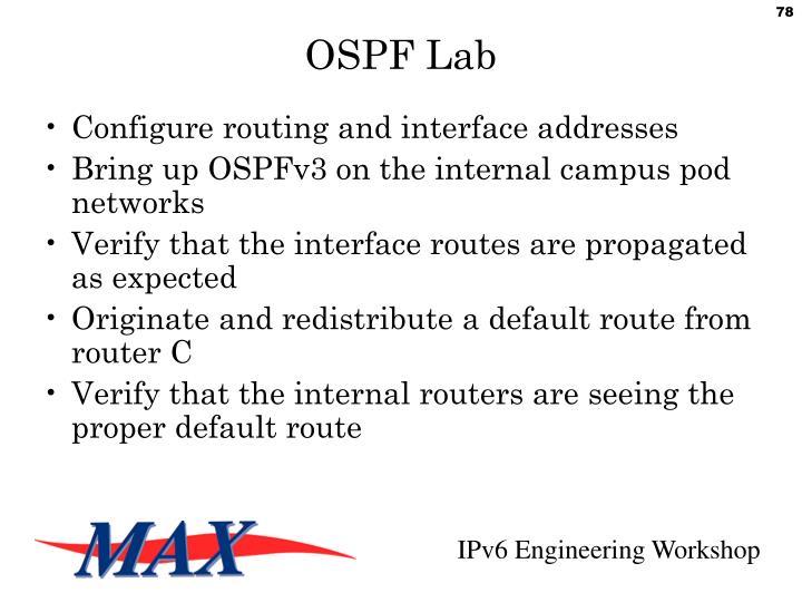 OSPF Lab