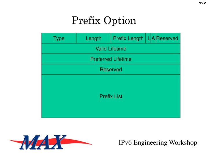 Prefix Option