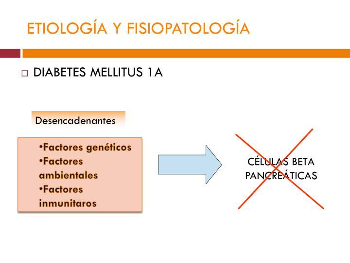 ETIOLOGÍA Y FISIOPATOLOGÍA