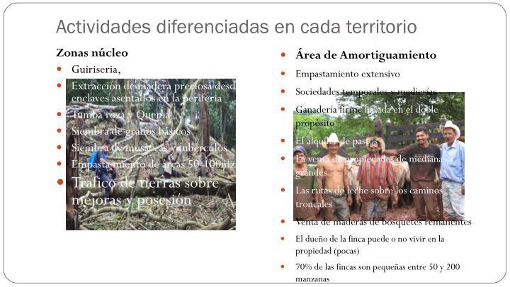 Actividades diferenciadas en cada territorio