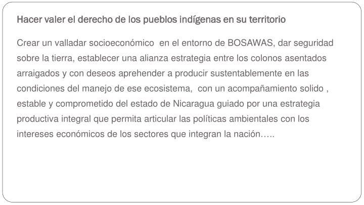 Hacer valer el derecho de los pueblos indígenas en su territorio