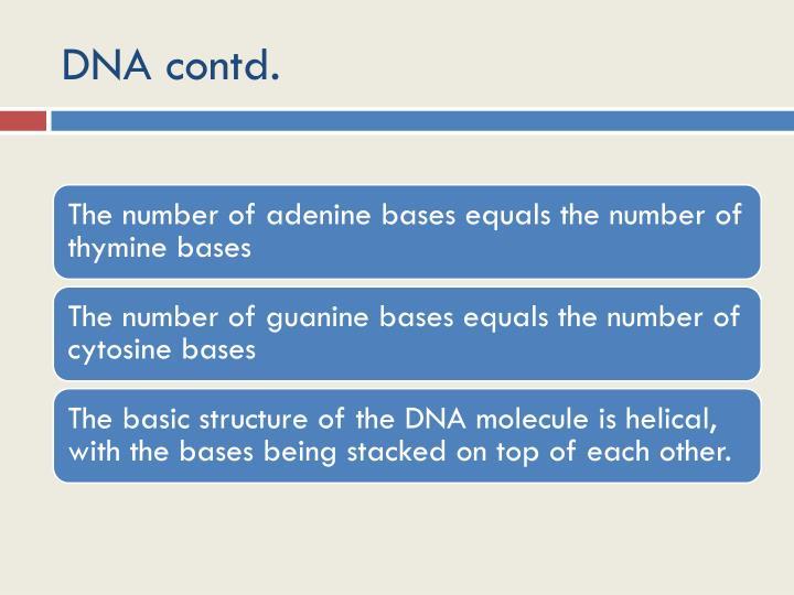 DNA contd.