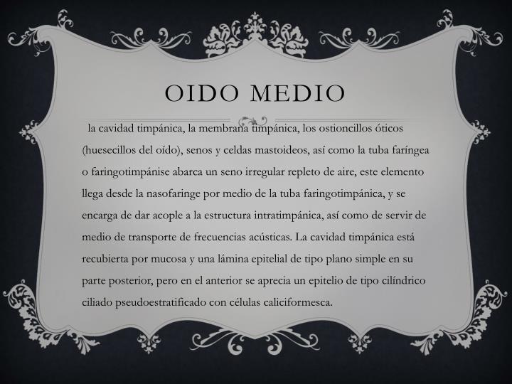 OIDO MEDIO