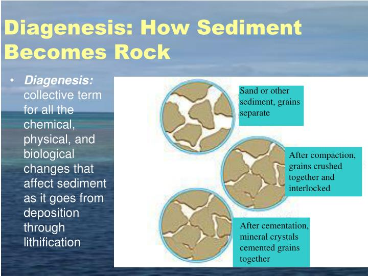 Diagenesis: How Sediment Becomes Rock
