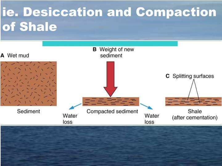 ie. Desiccation and Compaction of Shale