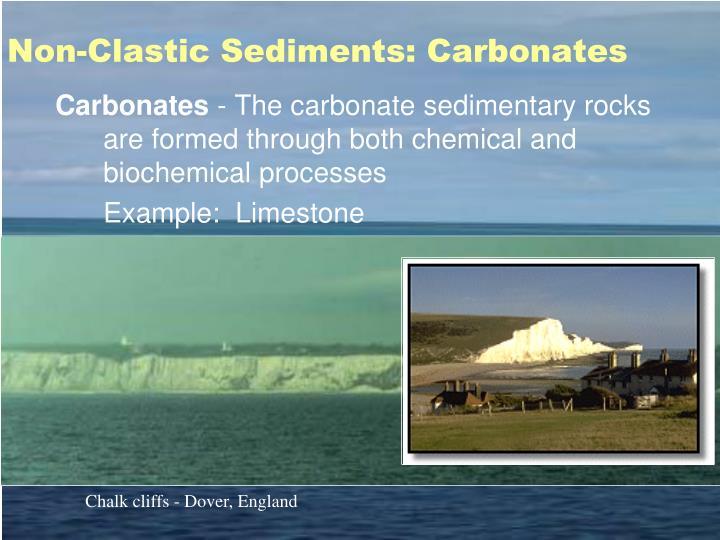 Non-Clastic Sediments: Carbonates