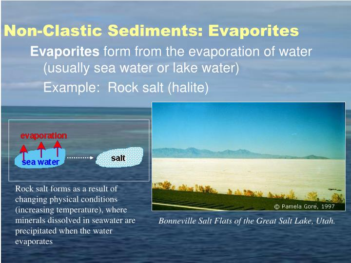 Non-Clastic Sediments: Evaporites