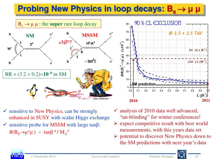 Probing New Physics in loop decays: