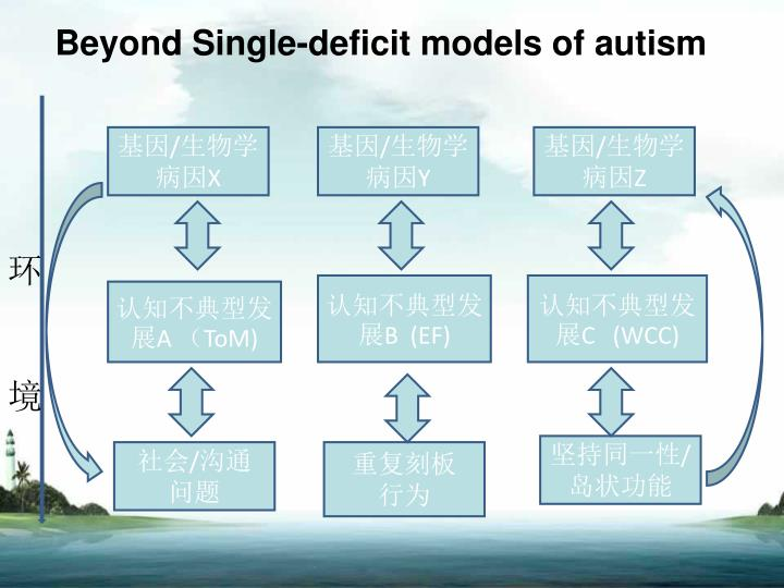Beyond Single-deficit models of autism