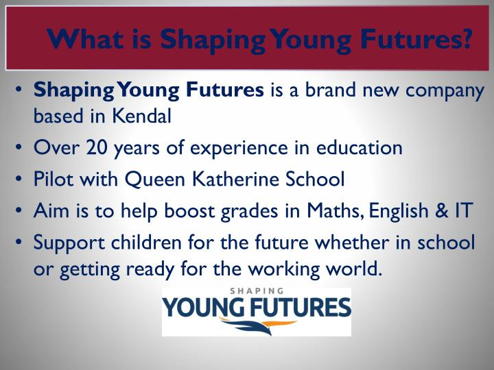 What is Shaping Young Futures?
