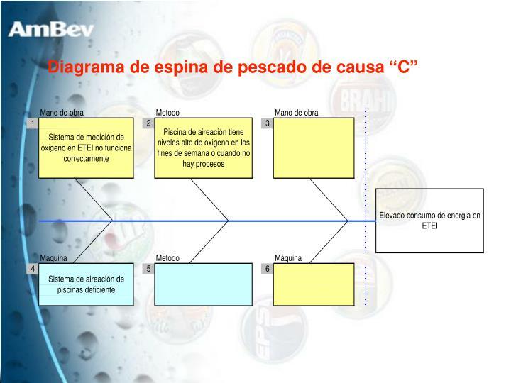 """Diagrama de espina de pescado de causa """"C"""""""