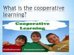 what is the cooperative learning