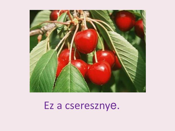 Ez a csereszny