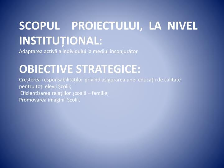 SCOPUL  PROIECTULUI, LA NIVEL INSTITUȚIONAL