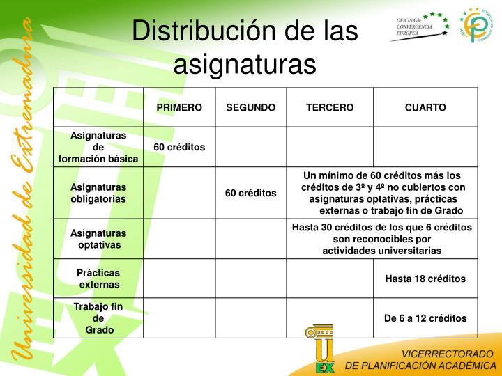 Distribución de las asignaturas