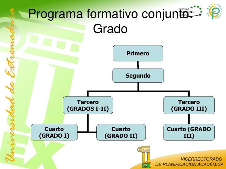 Programa formativo conjunto: Grado