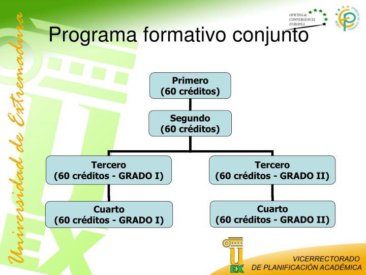 Programa formativo conjunto