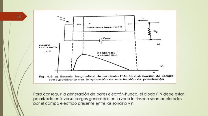 Para conseguir la generación de pares electrón-hueco, el diodo PIN debe estar polarizado en inversa cargas generadas en la zona intrínseca sean aceleradas por el campo eléctrico presente entre las zonas p y n