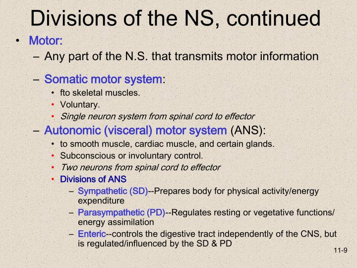 Divisions of the NS, continued