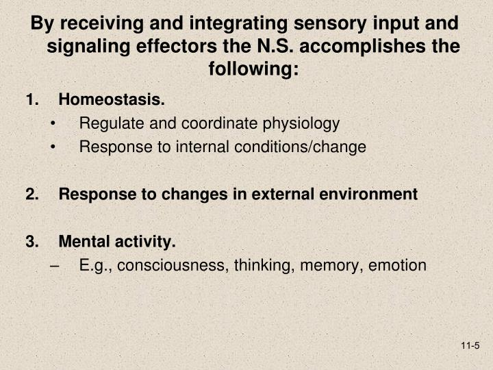 By receiving and integrating sensory input and signaling effectors the N.S. accomplishes the following: