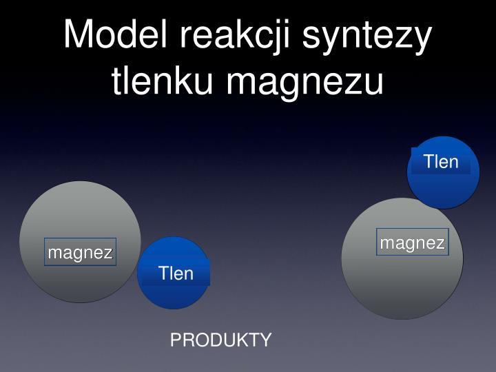 Model reakcji syntezy tlenku magnezu