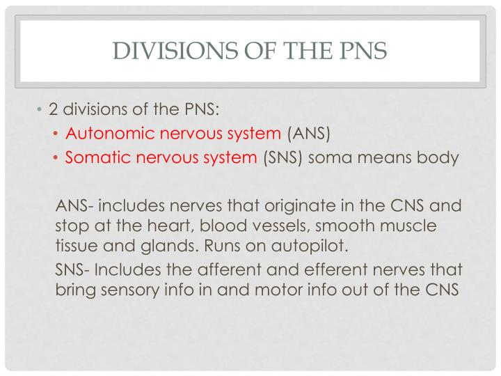 Divisions of the PNS